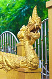 Золотая скульптура лестницы Naga в виске Lao Стоковое Изображение RF