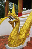 Золотая скульптура лестницы Naga в виске Lao Стоковые Изображения