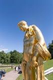 Золотая статуя человека в пригороде Свят-Петербурга парка Peterhof Стоковые Фотографии RF