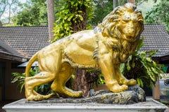 Золотая статуя льва Стоковая Фотография RF