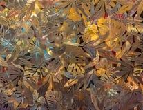 Золотая стена лист предпосылка Стоковое Фото