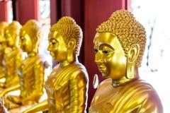 Золота Buddhas стоковое изображение rf