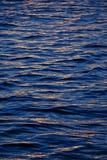 золотистая вода Стоковое Изображение RF