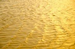 золотистая волна Стоковые Фотографии RF