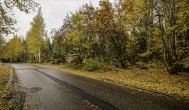 Золотистая осень Финляндия tampere Стоковое фото RF