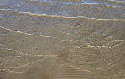 золотистая поверхностная вода пульсаций Стоковая Фотография RF