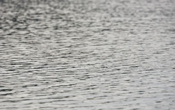 золотистая поверхностная вода пульсаций Стоковое Изображение RF