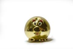 Золотистая свинья Стоковое Фото