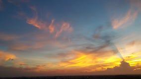 золотистое светлое утро Стоковое фото RF