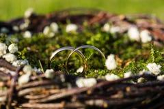 золотистые кольца 2 wedding Стоковое Изображение