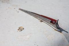золотистые кольца wedding Стоковое Изображение RF