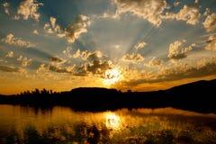 Золотистые отражения стоковое изображение