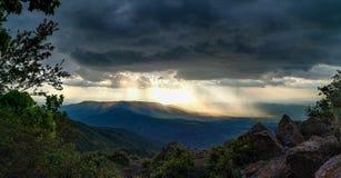 золотистые световые лучи Стоковое Фото