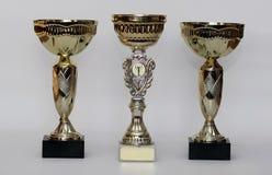 Золотистые трофеи стоковые изображения rf