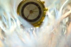 золотистый вахта Стоковое Изображение RF