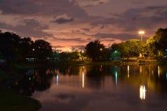 Золотистый вечер Стоковое Фото