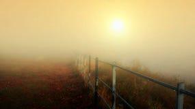 золотистый восход солнца Стоковая Фотография