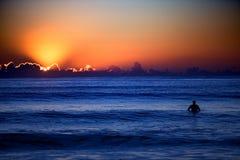 золотистый заниматься серфингом Стоковые Фотографии RF