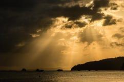 золотистый заход солнца тропический Стоковое Изображение RF