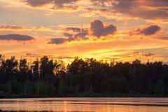 золотистый заход солнца Стоковое фото RF