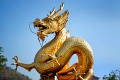 Золотистый дракон над голубым небом Стоковая Фотография RF