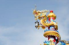 Золотистый дракон Стоковое Изображение