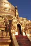 золотистый pagoda стоковые изображения