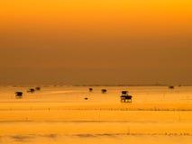 золотое небо в утре Стоковое Фото