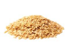 Золотое льняное семя Стоковые Фотографии RF