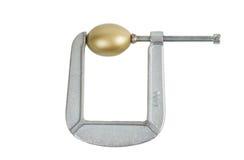 Золотое яичко в струбцине Стоковые Изображения RF