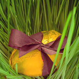 Золотое яичко в траве Стоковая Фотография RF