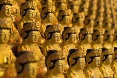 Золотое Buddhas виска Bongeunsa стоковые изображения rf