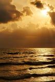 Золотое susnset Стоковые Фото