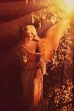 Золотой ангел в солнечном свете (античная статуя) Стоковая Фотография RF