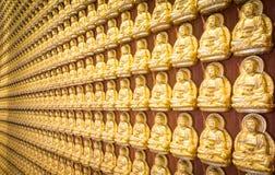 Золотой Будда тысяча Стоковые Изображения RF