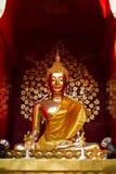 Золотой Будда Стоковое Изображение