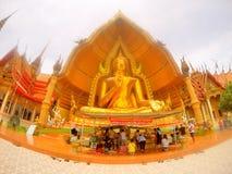 Золотой Будда, Grandness, поклонение людей Стоковое Изображение RF