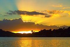 Золотой восход солнца вентилятора Стоковое Изображение RF