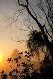 Золотой восход солнца на пике холма после похода утра стоковая фотография rf