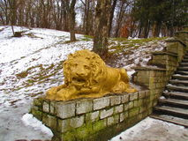 Золотой лев, Kamenets Podolskiy, Украина Стоковые Фото