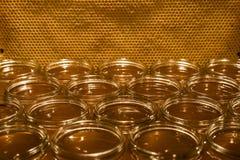 Золотой желтый мед в стеклянном опарнике на textspace рамки comp космоса экземпляра крупного плана деревянной доски пустом Стоковые Изображения