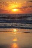 Золотой заход солнца над пляжем Стоковое Изображение RF
