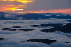 Золотой заход солнца Стоковое Изображение