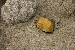 Золотой камень на песке Стоковые Изображения