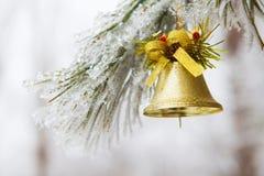 Золотой колокол на замороженном дереве Стоковые Изображения