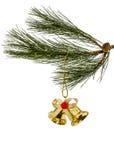 Золотой колокол рождества на елевой ветви, изолированной на задней части белизны Стоковая Фотография RF