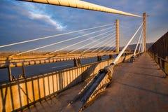 Золотой мост ушей Стоковая Фотография RF