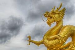 Золотой мощный дракон Стоковая Фотография RF