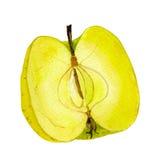 Золотой - очень вкусное половинное яблоко Стоковое Изображение RF