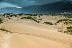 Золотой песок дюны Лансароте прибрежной Стоковое Фото